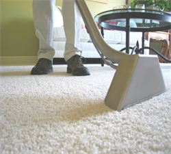 Carpet Cleaning Forest Hill