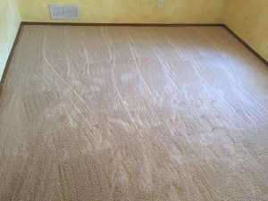 Carpet Repair Allen